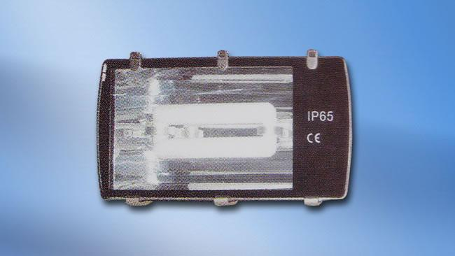 Floodlight Induction Lamp (HALO-FL-011)